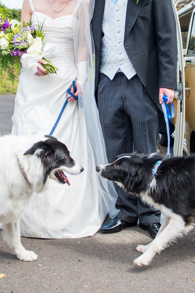 Dorset Wedding Photographer27
